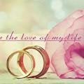 結個婚就負債,超省銅板價婚禮小物