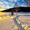 暖冬必備,保暖大集合