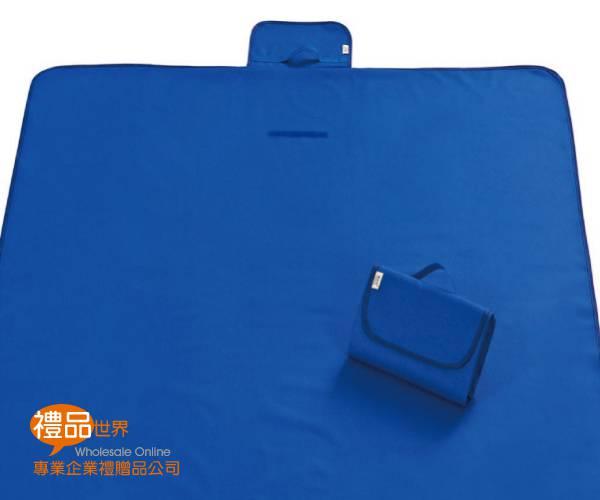 簡約素色野餐墊145x80cm